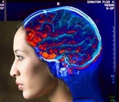 Ток крови влияет на активность нейронов