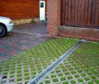 Как верно избрать газон