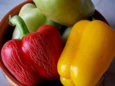 Как верно вырастить сладостный перец